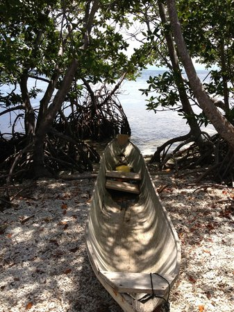 Cayequest Private Tours: Frigate Caye - Snorkeling stop