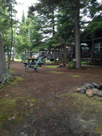 Tall Timber Lodge: Neighbors