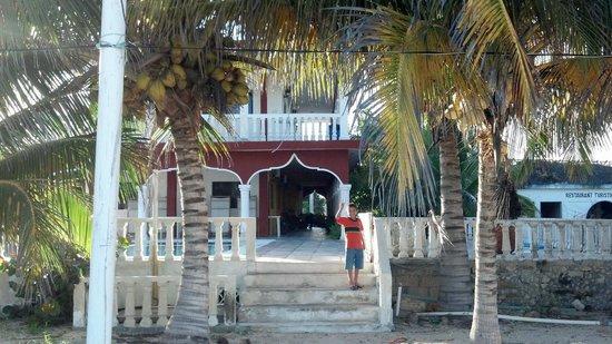 Ecohotel Flamingo Playa: vista del hotel desde la playa