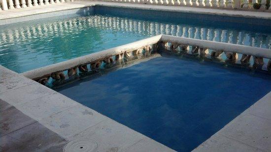 Ecohotel Flamingo Playa: alberca