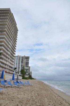 Ocean Sky Hotel & Resort: Beach area