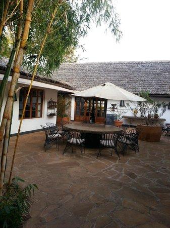 The Plantation Lodge & Safaris: from the bar