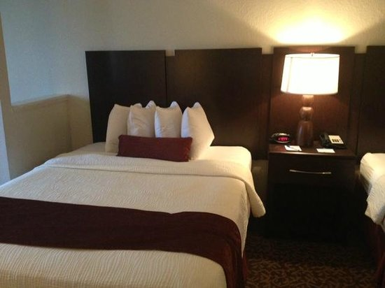 Best Western Plus Westchase Mini-Suites : Lovely bed spread and head board
