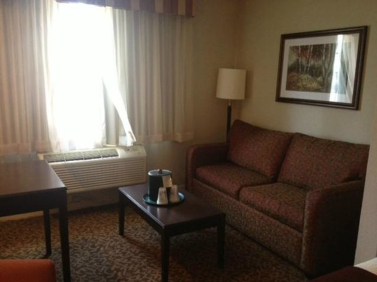 BEST WESTERN PLUS Westchase Mini-Suites: Nice relaxing area.