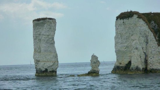 Old Harry Rocks: From the boat