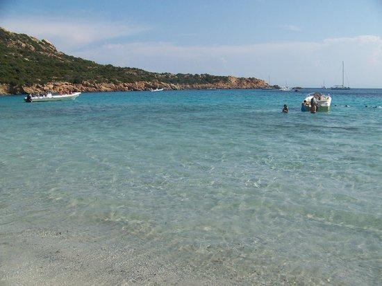 Roccapina Beach : mare
