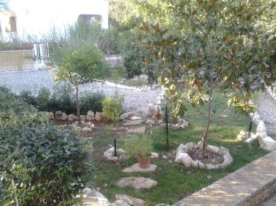 Villa Vittoria B&B: il giardino