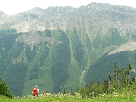 Talus Lodge : a day hike