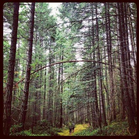 Steveston EcoTours: Valdes mid-island hike