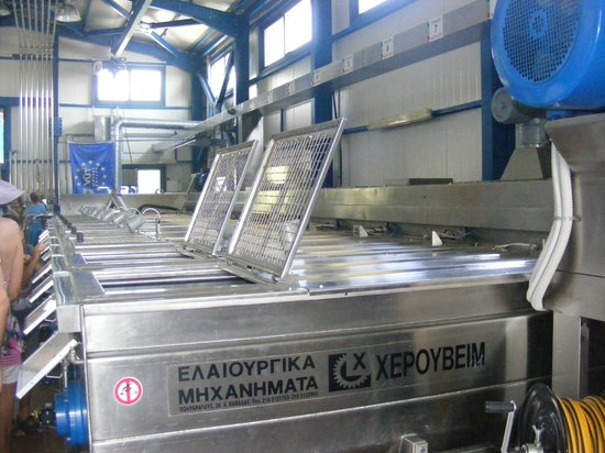 Aristeon Ecological Olive Press: The Olive Processing Factory