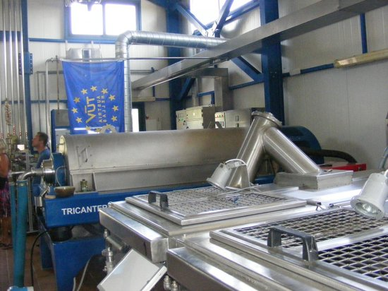 Aristeon Ecological Olive Press: Olive Processing Factory
