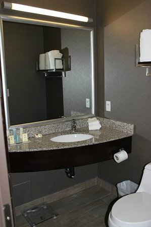 Acclaim Hotel Calgary Airport: Vanity