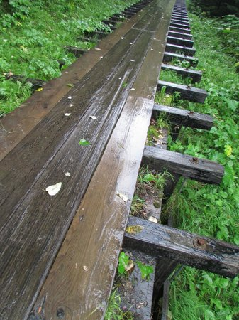 Perseverance National Recreation Trail: nice, easy paths