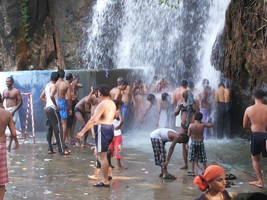 Manimuthar And Papanasam Dams : at agathiyar falls