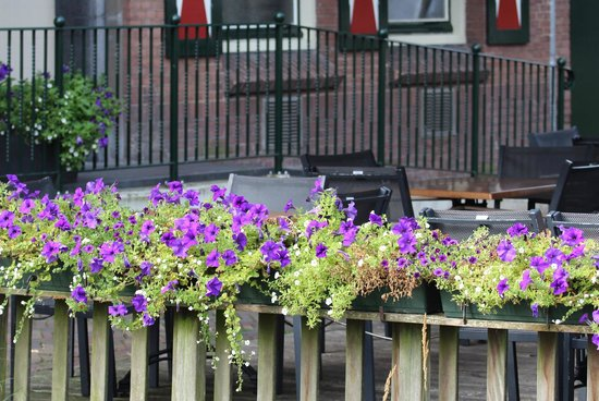Gasterij het Oude Posthuys: Flowers surround the outside dining area