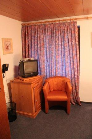 Gasthof Hirschen-Dorfmühle: TV/refrigerator (inside cabinet)