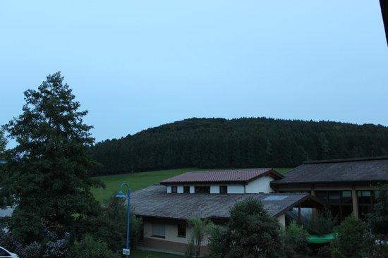 Gasthof Hirschen-Dorfmühle: View from the room