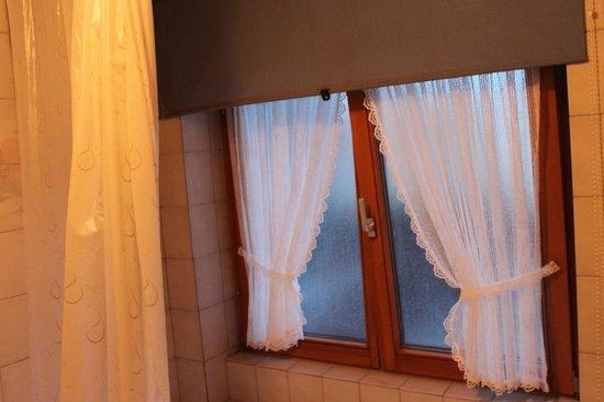 Gasthof Hirschen-Dorfmühle: Window in shower (there is a shade)