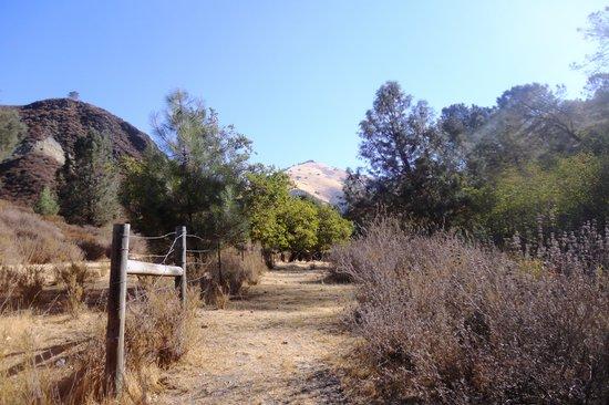 Los Olivos, CA: Autour de Neverland