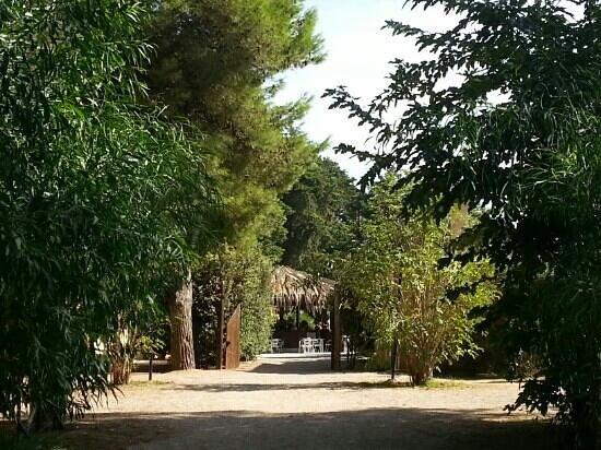Camping Village Sentinella: ingresso alla zona club