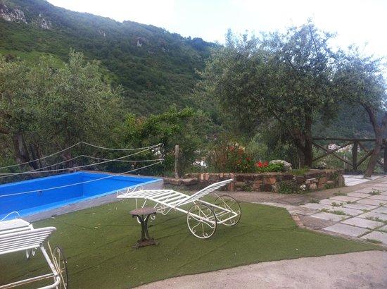 Casa Mazzola B&B: Casa Mazzola interior garden