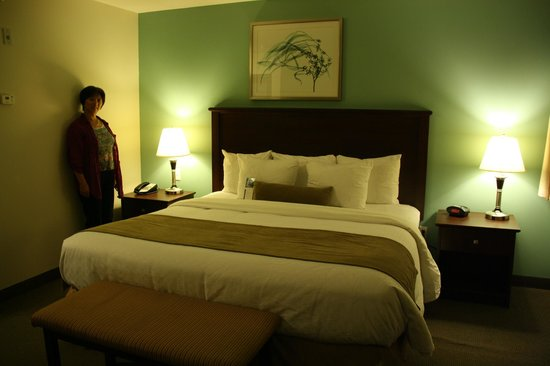 Best Western Plus Chocolate Lake Hotel : Our single king room.