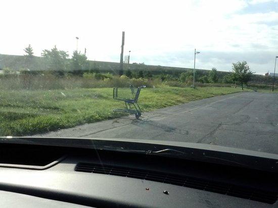 Motel 6 Benton Harbor: More Shopping Carts?