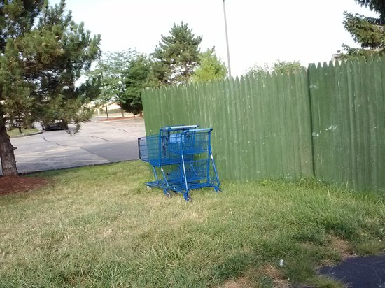 Motel 6 Benton Harbor: And more shopping carts?