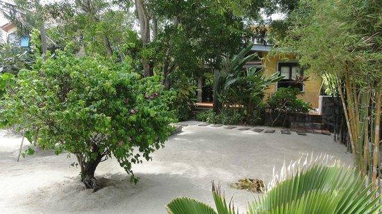 Sunshine Residence: Garden