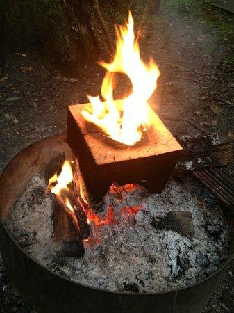 Julian Price Park Campground : LOVE BlazinBuddy!