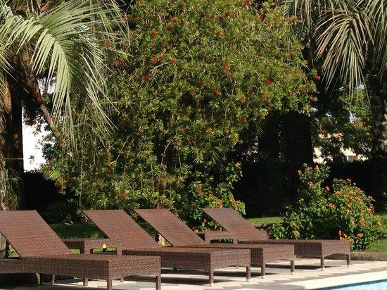Villa dei D'Armiento: modern pool area - fabulous!