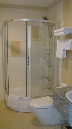 Golden Central Hotel: bagno