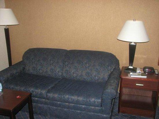 Wyndham Garden Urbana Champaign: Room sofa