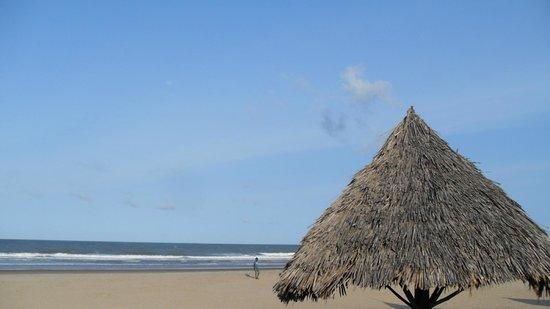 Karibuni Villas: beach