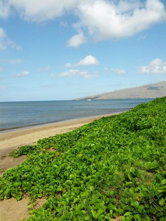 Kihei Sands Beachfront Condominiums: View up the beach from the front of the complex
