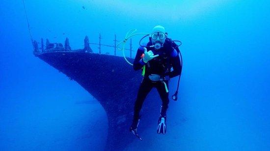Dive Oahu: Sea Tiger, Hawaii