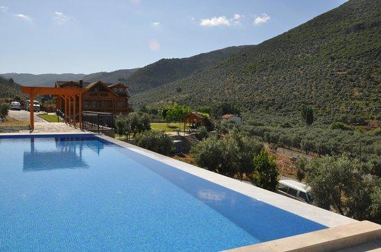 Natureland Efes Pension: Beautiful