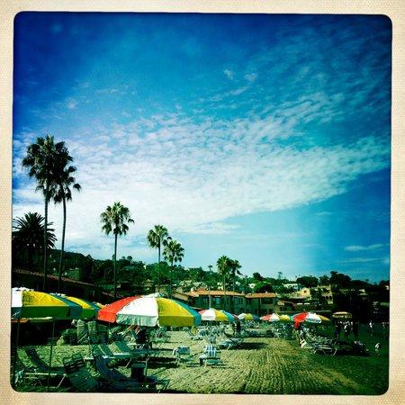 La Jolla Beach & Tennis Club : The beach and hotel
