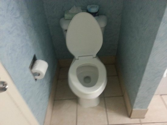 Dolphin Inn: toilet was clean