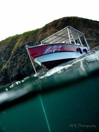 BA Divers : Boat, Flamingo...