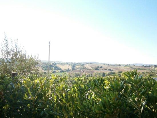 Tenuta Santini: vista