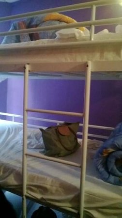 Friend's Hostel: the bunk bed