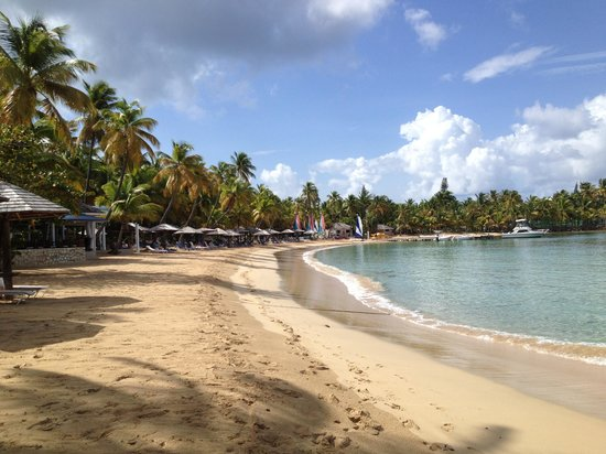 Curtain Bluff Resort: The Beach