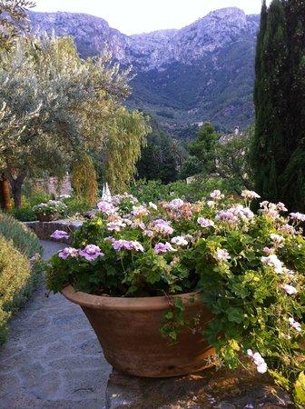 Belmond La Residencia: Garden