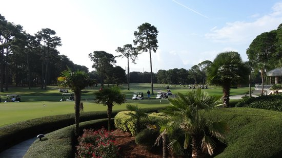 Inn & Club at Harbour Town - Sea Pines Resort: View of Golf Course