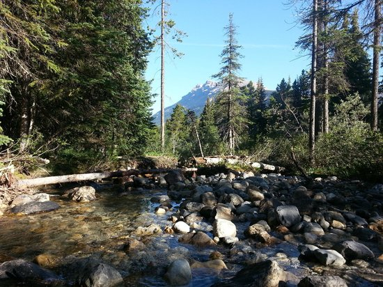 HI-Mosquito Creek Wilderness Hostel: wash facilities