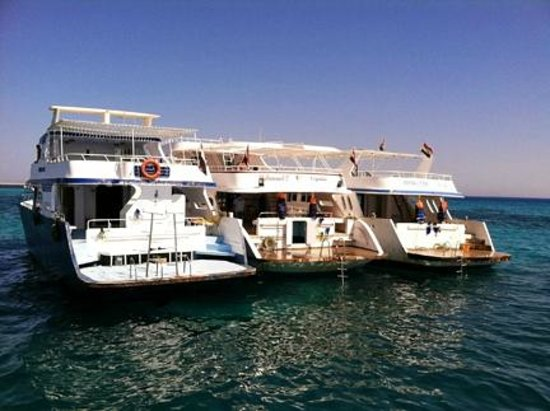 Ramasside Tours - Day Tours: Snorkeling boats in Red Sea