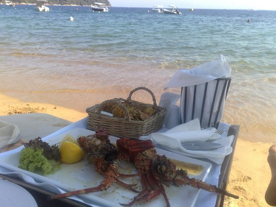 Agia Paraskevi, Griekenland: Lobster served on the beach of Princess Skiathos