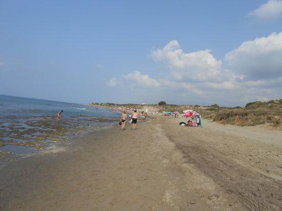 Puerto Cabopino Beach and Marina: Towards the Naturist Beach
