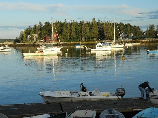 Five Islands Lobster Co: Harbor at Five Islands